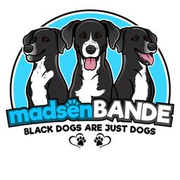 Logo der madsenBANDE